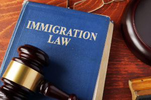 Имиграционное право